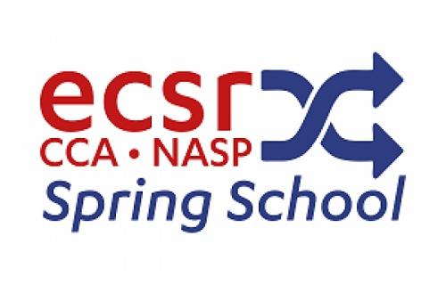 2021 ECSR-CCA-NASP Spring School - CfA